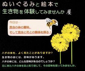 Menu_sawamura1